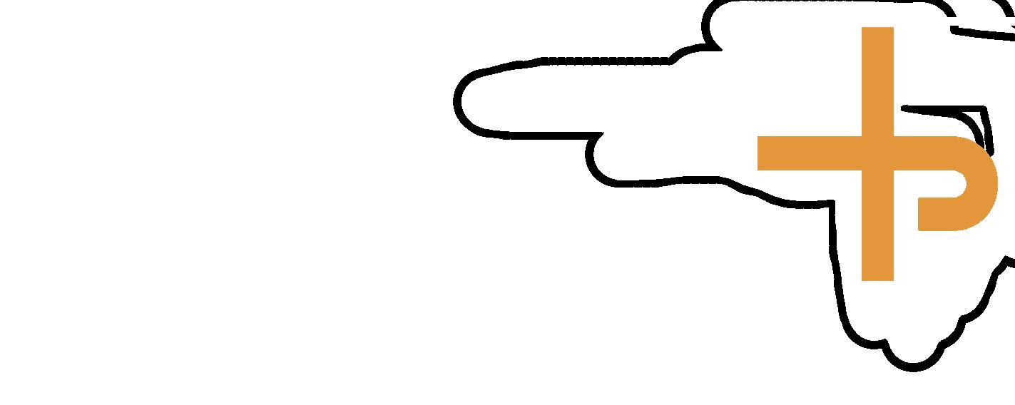 V PLUS